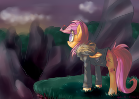 Over the Mountains by 8-Xenon-8