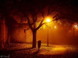 Paradise by the Trash Can Light by tvurk