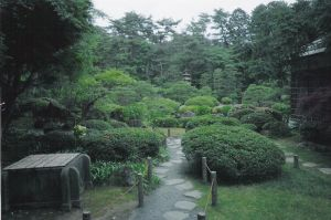 japanese garden by CharryCola
