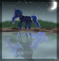 Moonlight Walk by Dralion97