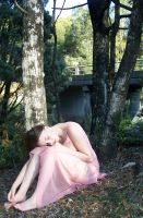 Pink Fairy Girl In Forest 12 by Gracies-Stock