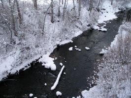 Susan River in Winter by SurfTiki