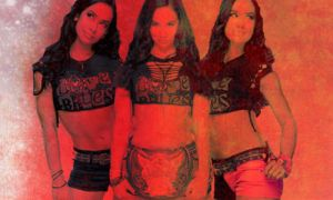AJ Lee Banner by TheSoulOfTheSouless