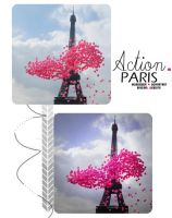 Action Paris by Heisbieber
