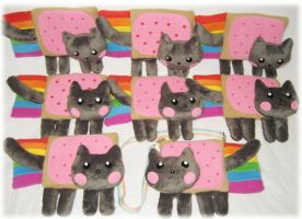 Nyan cat plushies by Rens-twin