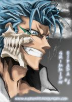 Grimmjow by Mariondf