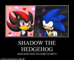 SHADOW THE HEDGEHOG by iLUVshadsfoREVer