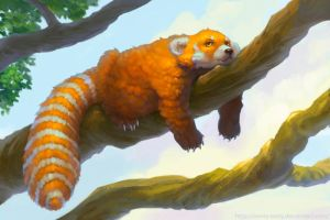 the Red panda by lowly-owly