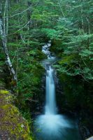 Falls by mark-flammable