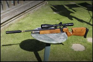 Air Arms S200 - 1 by SWAT-Strachan