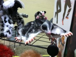 Sugar Glider and baby (sold) by Butterfly-Kitsune