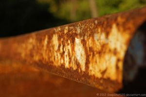 Rusted by SnapShot120