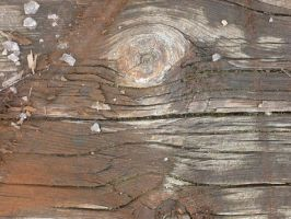 Texture_04 by malicia-stock