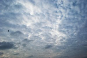 clouds 24 by deepest-stock
