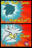 .::Who's That Sonic Character?::. by The-Missing-Tune
