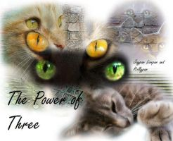 The Power Of Three Wallpaper by horseytamer1
