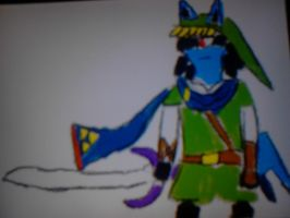 lucario Hyrule Warriors by mikel-morell-cordero
