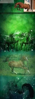 Green design with unicorns and warmblood horses by 3Epica3