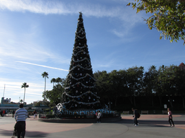 christmas Tree WDW Hollywood Studios 2 by WDWParksGal-Stock