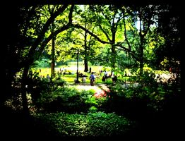 Summer in Central Park 1 by Roxsana2012