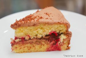Genoise cake 4 by patchow