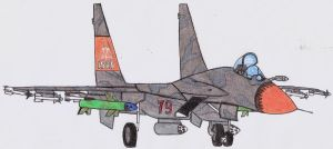 Dingo s SU-37 in AC4 iprogress by DingoPatagonico