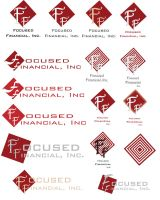 Logo Set for Focused Financial by MadMouseMedia