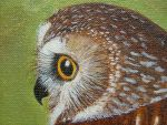 Detail of Owl picture by tonyartist1