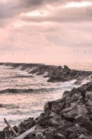South Jetty by MFDonovan