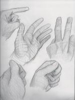 A Look at Hands by NeverStop13