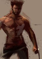 Wolverine Sketches by JuN by JunNing