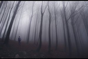 Man In Forest by Secr3tDesign
