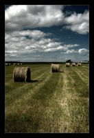 Hay Stacks by BrightRedFox