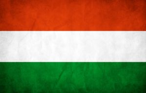 Hungary Grunge Flag by think0