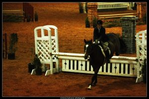 Winter I show 11 by blondy0262