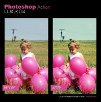 Photoshop Action - Color 014 by primaluce