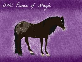 BWS Prince of Magic by jackiehorse