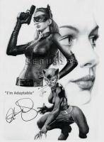 Anne Hathaway - Catwoman by sebus195