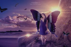 Butterfly by dreamswoman