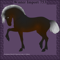 Nordanner Winter Import 753 by DemiWolfe