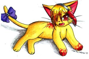 COM Scarlet the Cat by MattTheUmbreon