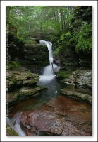 Adams Falls at Ricketts Glen by Mardonic