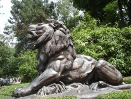 Zoo Lion Statue by Archanubis
