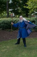 2014-08-31 Wizard in Park 06 by skydancer-stock