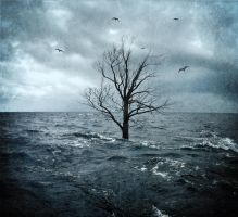 Sea Tree (The Tempest) by error-23