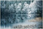 First winter days.. II by closer-to-heaven