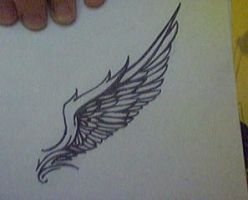 wing by CafeLatine