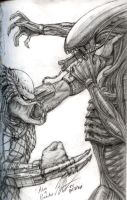 Alien Vs. Predator Sketch by Knockwurst