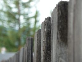 Any Old Fence by AtomicBrownie