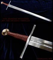 The Bearded Brethren of the Knights Templar 2 by Fableblades